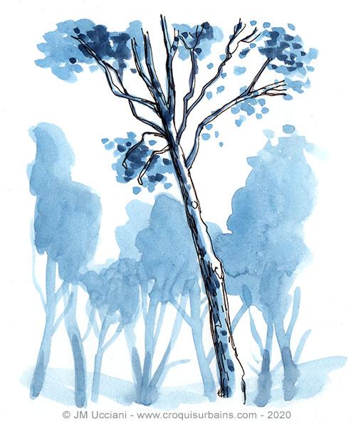 Pin bleu
