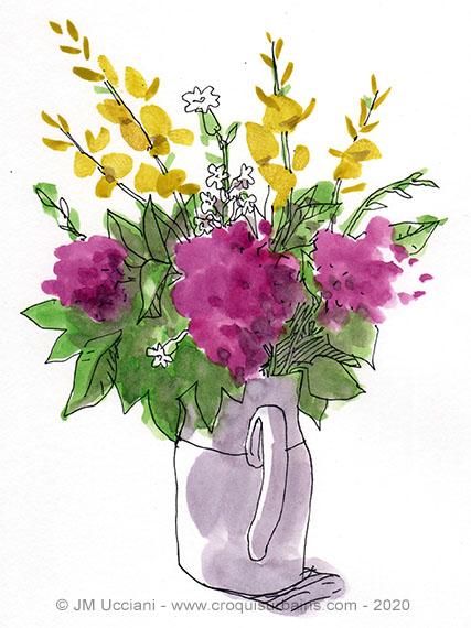 Genêts et lilas