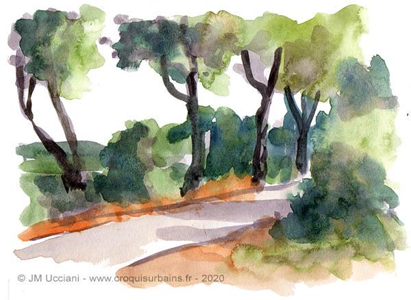 chemin de Provence