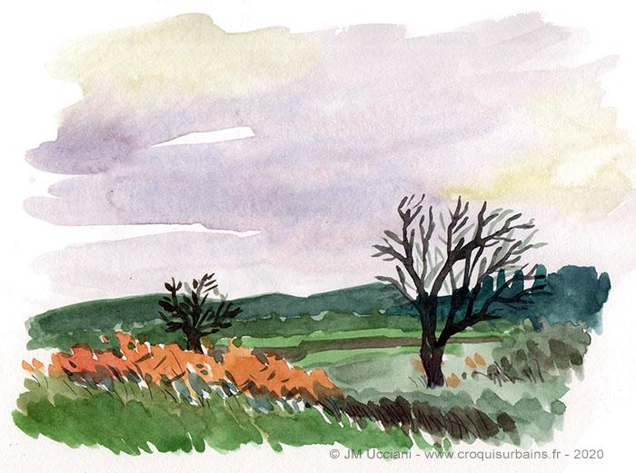 Couleurs d'automne en Provence