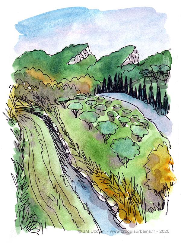 Paysage de Provence freestyle