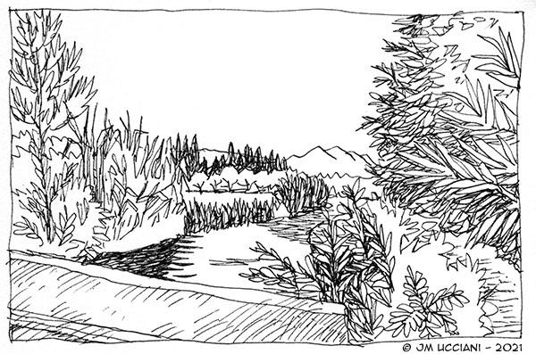 Canal sur fond d'Alpilles