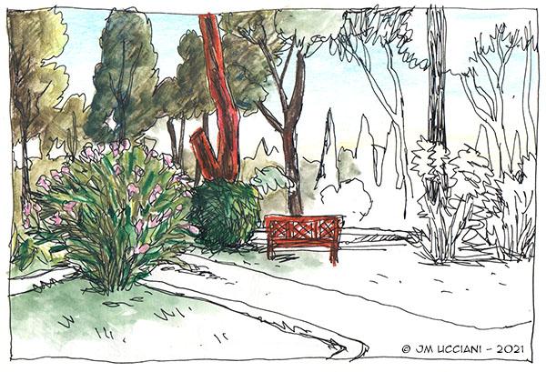 Jardin dans la pinède.